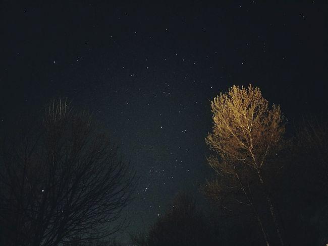 Taken on galaxy s7! Sky Nightsky Stars Washington Beautiful PNW Pacificnorthwest Artofvisuals