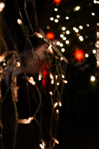 Capture Tomorrow Night Illuminated Focus On Foreground Celebration Close-up Lighting Equipment Decoration No People Plant Tree Nature Selective Focus Glowing Outdoors Fragility Christmas Lights Electricity  Christmas Decoration Spider Web Complexity Light EyeEmNewHere