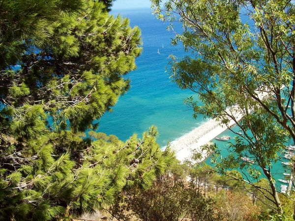 Nature Day Beauty In Nature No People Sea Landscape Travel Destinations Italy Sicily Travel Blue Seascape Scenics Travelphotography Tree
