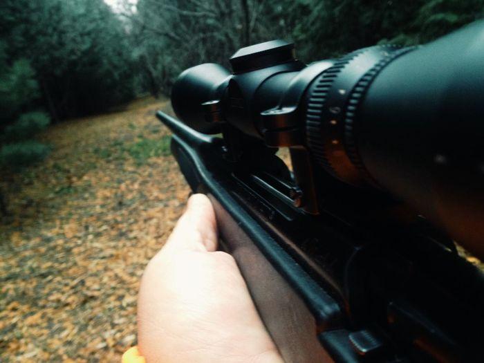 Gun control Gun Shooting Gun Control