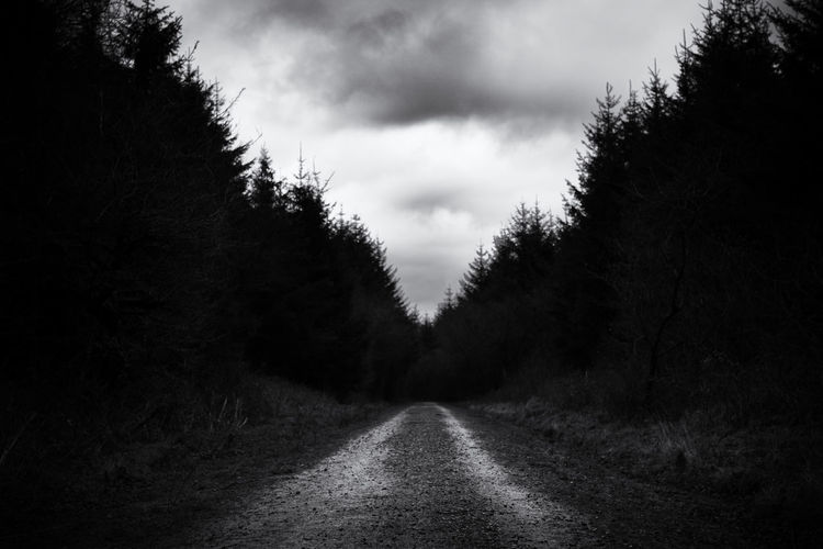 Atmospheric Mood Cloud Cloud - Sky Cloudy Following The Path... Forest Mystery Nature No People Outdoors Overcast Sky