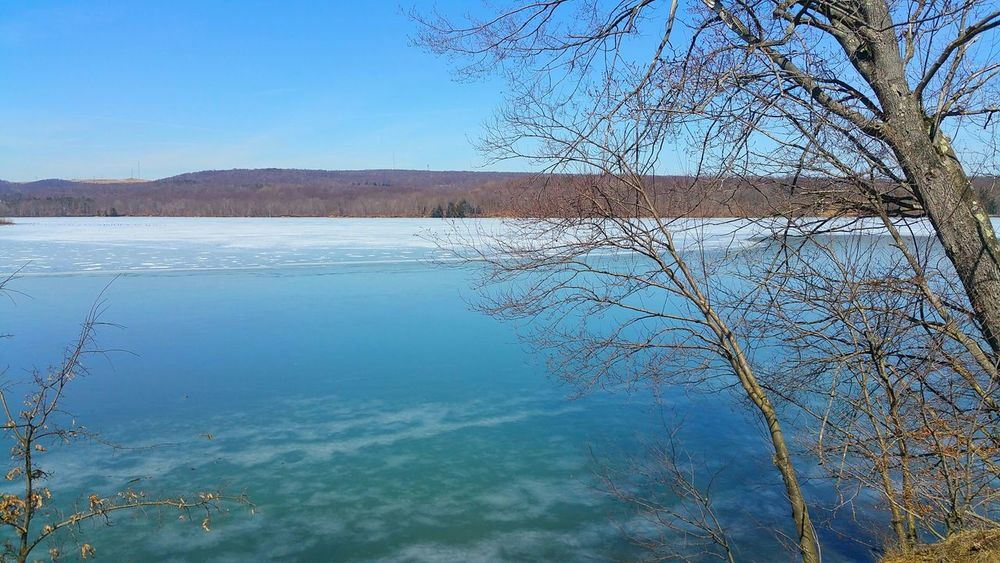 I love the blue hues created with the ice starts to melt. Dragonfly Pond Yellow Creek State Park Outdoors Nature Travel