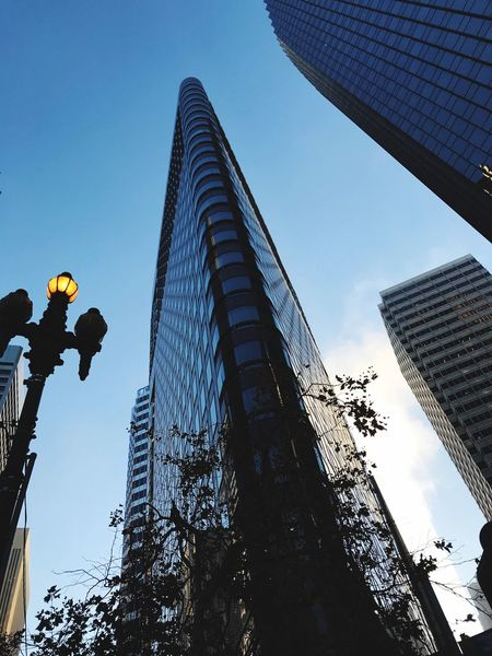 Market rises Sky Low Angle View Tall - High Architecture Building Exterior Built Structure Office Building Exterior Skyscraper Modern