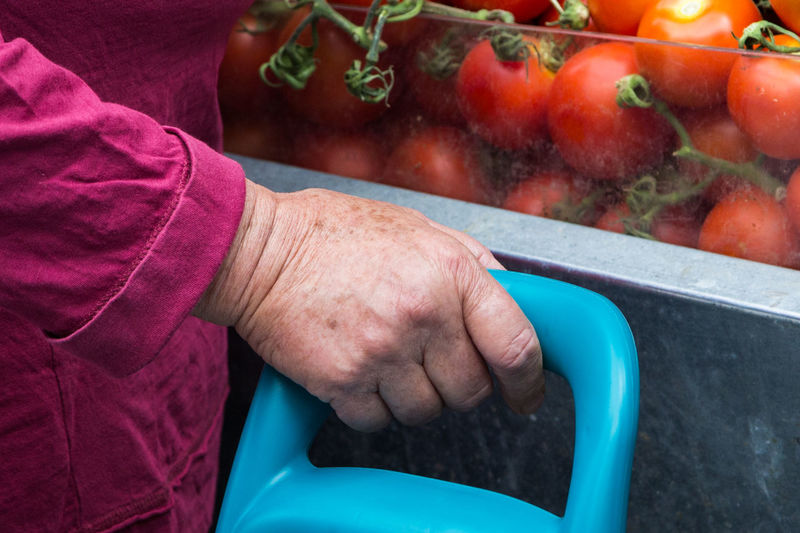 Cropped hand of person holding plastic by tomatoes for sale