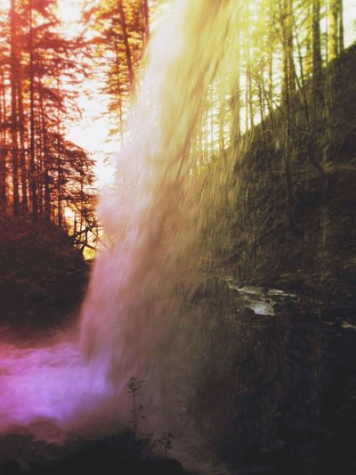 colorfall Tree Water Forest Sunset Sunlight Tree Area Landscape Streaming Waterfall Sunbeam Flowing Water Long Exposure Sun Falling Water Shining Power In Nature The Great Outdoors - 2018 EyeEm Awards The Traveler - 2018 EyeEm Awards The Creative - 2018 EyeEm Awards Summer Road Tripping