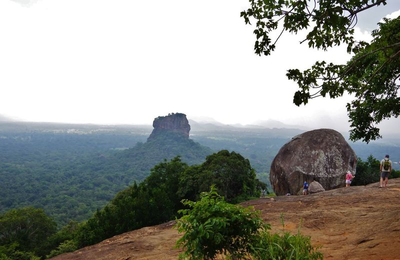Sri Lanka View Pidurangala Lion Rock Sigiriya Rock Jungle Climb Rock Plant Tree Sky Mountain Architecture Nature Scenics - Nature Travel Destinations Beauty In Nature Travel Landscape Go Higher