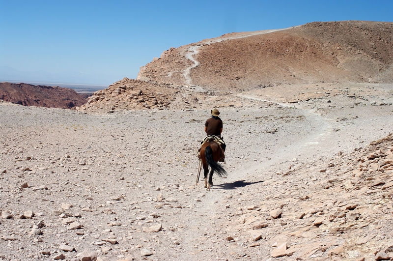 Rear View Of Man Riding Horse At Desert