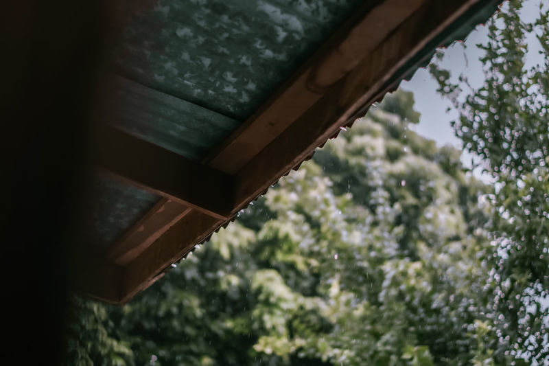 Low angle view of roof against trees