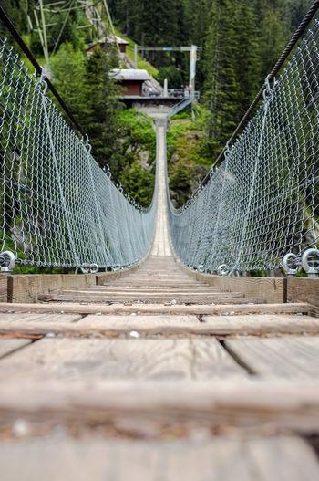 Surface level of footbridge against trees