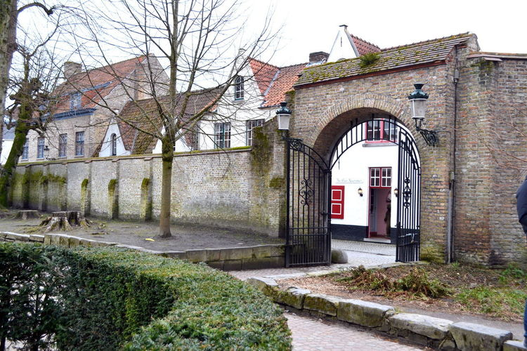 Architecture Belgium Brugge Cityscape Old Town Trip View Arch Architecture Bare Tree Building Exterior Built Structure Day Door Europe Landscape No People Outdoors Prospective Sky Travel Destinations Tree Village