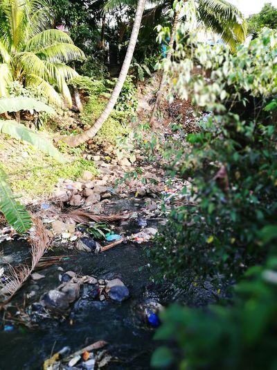 Contaminated Nature Garbage River Humans Destruction