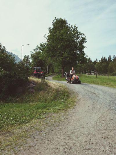 Farmers Life Farmer Sweden-landscape