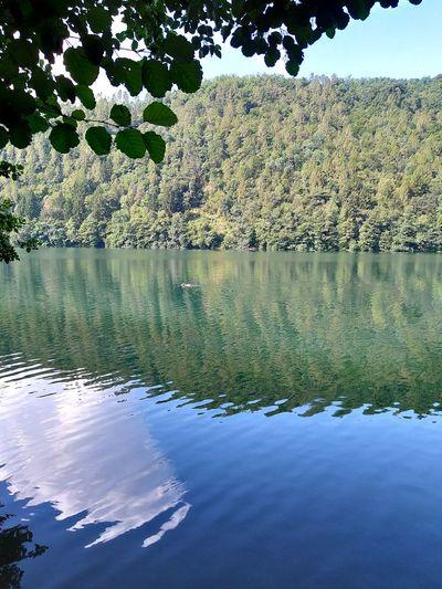 lago Lake View