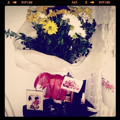 Odamin Yeni Cicisii :)