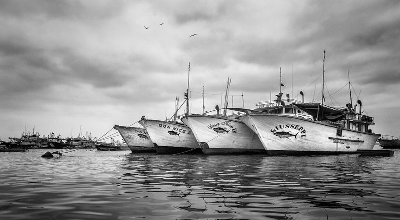 Tuna Fishing Beauty In Nature Boats Cloud - Sky Day Harbor Manabí Mast Mode Of Transport Monochrome Moored Nature Nautical Vessel No People Outdoors Sea Sky Transportation Water Waterfront Black And White Friday