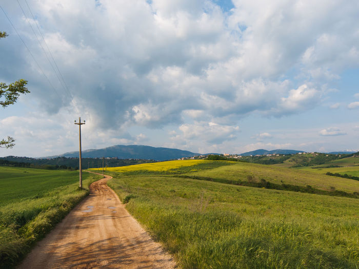 Campaign landscape in italy Agriculture Beauty In Nature Composition Distant Environmental Conservation Farm Field Green Green Color Growth Italy Landscape Lazio Leading Mirkomacarilandscape Nature Outdoors Perspective Remote Rural Scene Sky The Way Forward Tranquil Scene Tranquility Tree