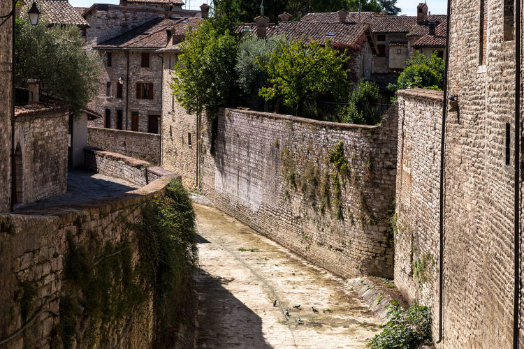 Ancient Architecture Building Building Exterior Built Structure Day History House Nature No People Old Outdoors Plant Stone Wall The Past Travel Destinations Tree Wall Wall - Building Feature Water
