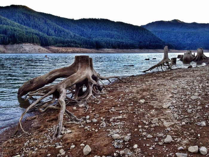 Lake Drought