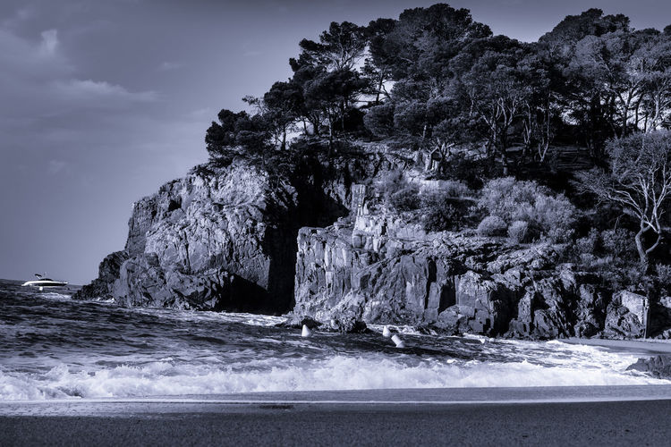 Land Nature Day Outdoors Beach Water Sea Beauty In Nature No People Sky Tree Tranquility Scenics - Nature Motion Tranquil Scene Rock Plant Waterfront Rock - Object Power In Nature Blackandwhite Coastline Black And White Beauty In Nature