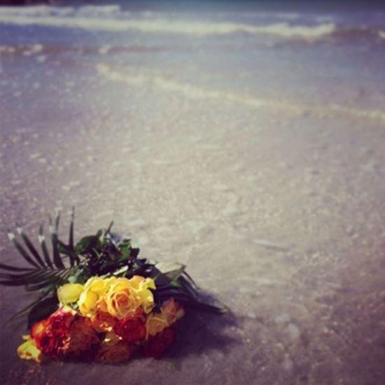 Roses Beach Sun Sea Sand
