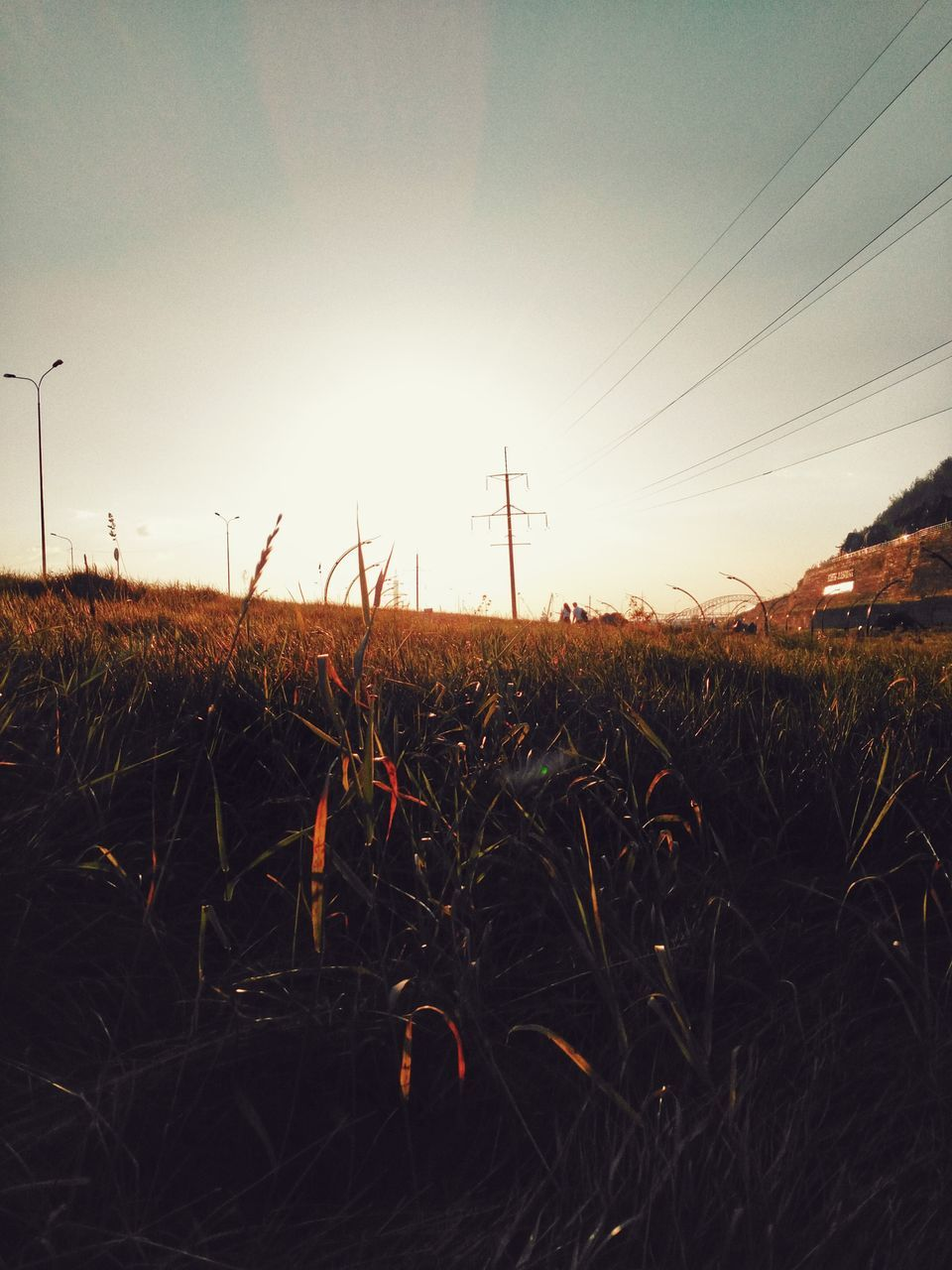 grass, field, cable, electricity, sunset, landscape, nature, no people, sky, electricity pylon, tranquility, beauty in nature, technology, outdoors, growth, scenics, wind turbine, day, wind power