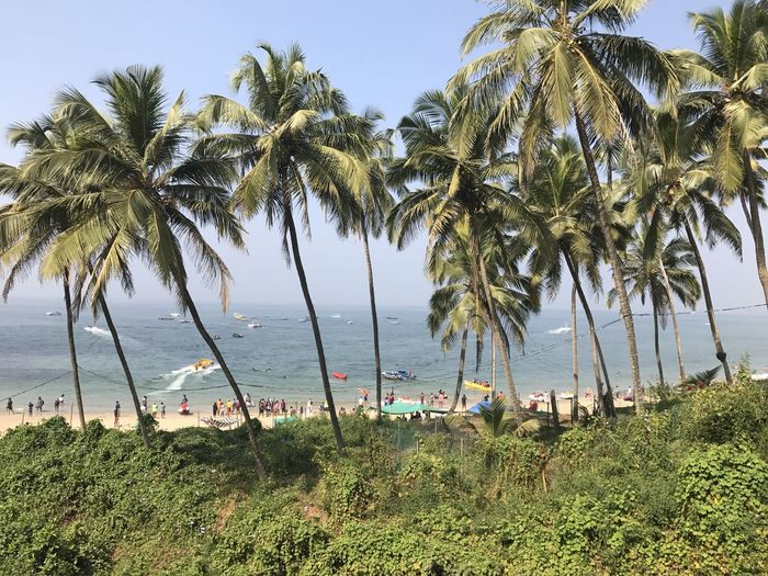 Goa - Weekend blast. Celebrating new year with full hungama and fun... Beach Beauty In Nature Horizon Over Water Outdoors Palm Tree Sea The Great Outdoors - 2017 EyeEm Awards Tranquil Scene Water