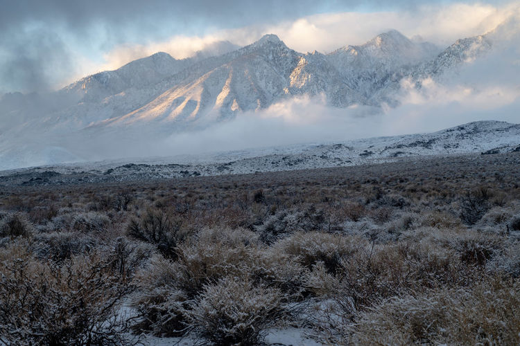 morning landscape with snow clouds hanging over snow covered mountains and snowy desert valley Eastern Sierra Nevadas of California, USA Mountain Scenics - Nature Beauty In Nature Tranquil Scene Environment Tranquility Landscape Non-urban Scene Sky No People Cloud - Sky Nature Mountain Range Cold Temperature Snowcapped Mountain Sierra Nevada Desert Snow Desert Snowfall California Sunrise And Clouds Sunrise Mountain Desert Valley Morning Light