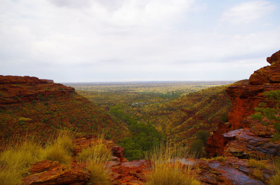 Kings Canyon Beauty In Nature Cliff Day Landscape Nature No People Outdoors Scenics Sky Tourism Tranquil Scene Tranquility Travel Destinations
