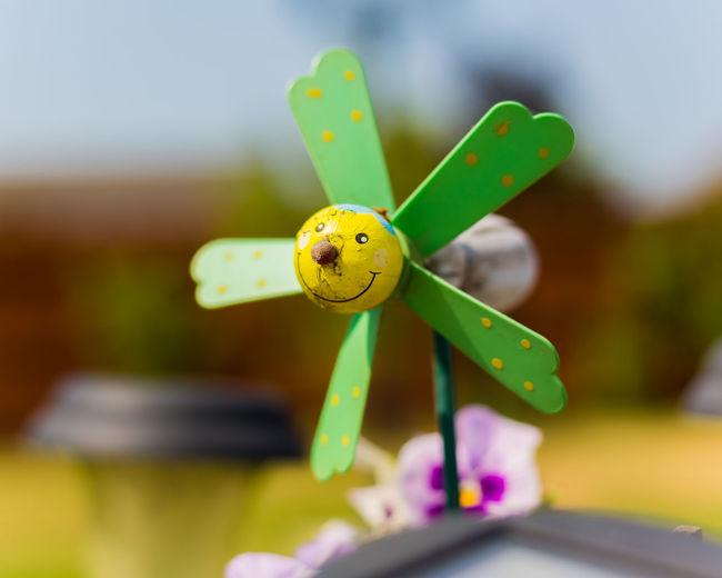 Close-up of pinwheel toy