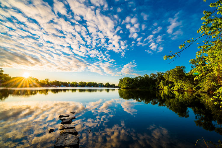 Baltimore Beauty In Nature Blue Cloud - Sky Cufotos Day Lake Mary Nature Nikon Nikonphotography No People Outdoors Reflection Scenics Sky Sunlight Tranquil Scene Tranquility Tree Water