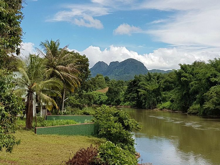 Kanchanaburi Thailand River Kwai Naturelovers Nature Water Side River View Nature Photography Everyday Asia First Eyeem Photo Beauty In Nature Green Green Green!  Palm Tree Palms Blue Sky White Clouds Travel Destinations Travel Photography