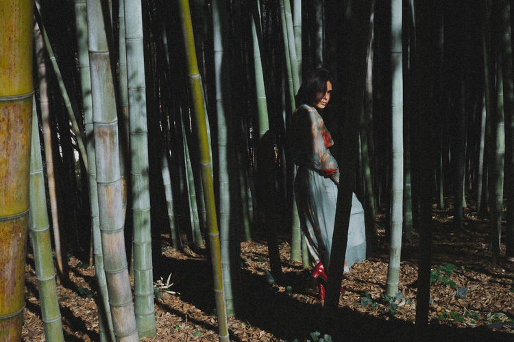 Young woman standing amidst bamboo plants at forest on sunny day