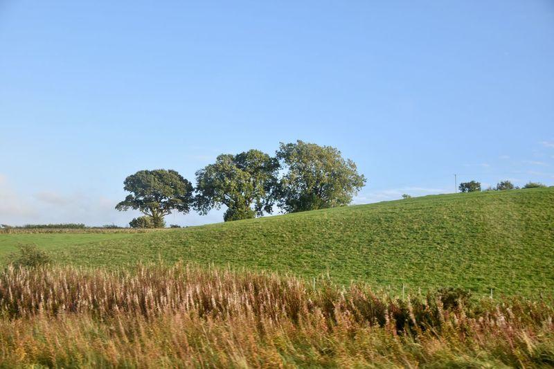 Taking Photos Landscape Motorway View Trees Hillside Nikon D5500