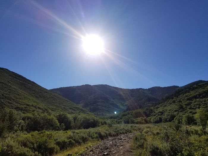 Sun Beauty In Nature Nature Mountain Sunlight Landscape Sky Plant Scenics Agriculture No People Mountain Range Outdoors Tree Rural Scene Moon Tea Crop Day Freshness Space