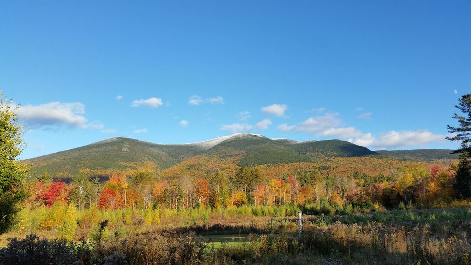 Mountain Tranquil Scene Tranquility Blue Sky Scenics Nature Mountain Range Solitude Non-urban Scene Beauty In Nature First Snowfall 1st Snowfall, 2016 Changing Colors Fall Leaves Snow Capped Mountain Foliage, New England New Hampshire New England  Autumn Nature Forest Franconia, NH Multi Colored Landscapes