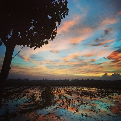 Clouds come floating into my life, no longer to carry rain or usher storm, but to add color to my sunset sky. Rabindranath Tagore,Stray Birds Sunset Sunsetbythehighway Twilight Katssunset Wanderkat Favoritetimeoftheday Blessings Nofilter Colorsofthesky