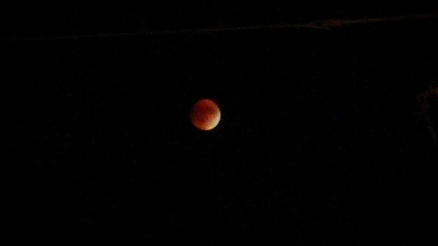 Super Blood Moon 2015 - Sioux City, Iowa Moon Total Lunar Eclipse Night Astronomy Beauty In Nature Phenomenon Bloodmoon Lunar Tetrad Sioux City Iowa Space And Astronomy Rare Phenomenon Rare Skies Rare Events