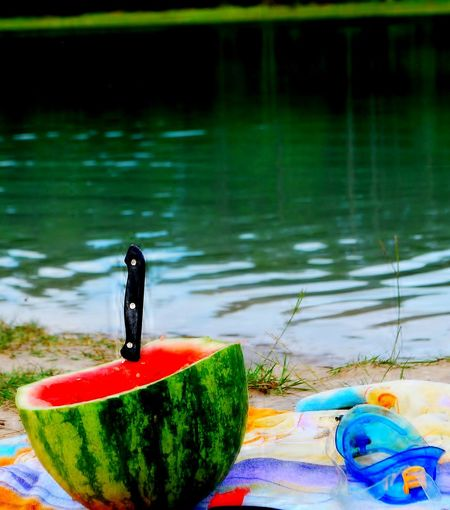 Watermelon on the river Floating On Water Outdoors Nature Water Close-up Beauty In Nature Freshness Riverbank Water Multi Colored No People Outdoors Floating On Water Swimming Pool Day Close-up Nature