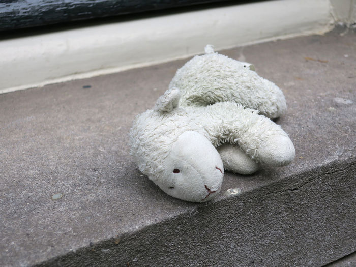 lost sheep, cuddly toy or stuffed animal laying on a freestone windowsill Lost Sheep Lamb Toy Cuddly Toy Stone Window Sill Freestone Gray Animal Loss Stuffed Toy Animal Representation No People Abandoned Focus On Foreground Still Life Softness Outdoors City Day