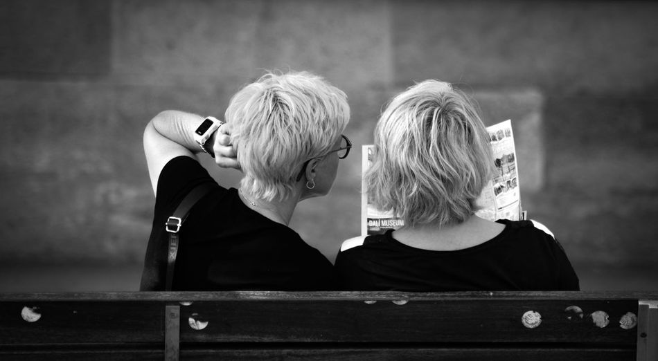Rear view of people sitting on bench