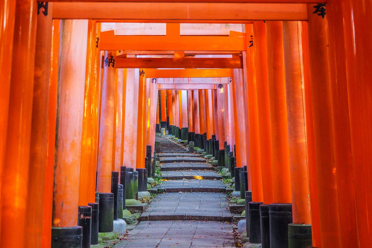 Walkway In Torii Gates