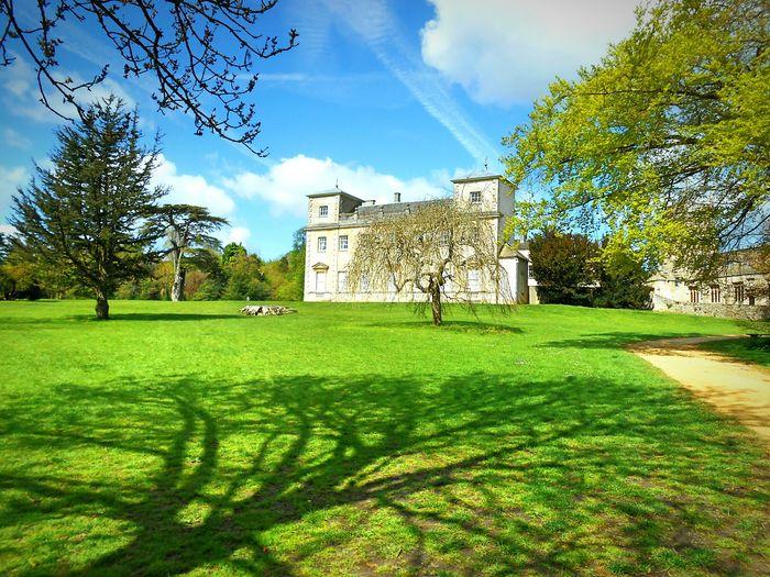 Taken by me on my Nikon S3200 today. Spring Nature Trees LydiardHouse LydiardPark Swindon Wiltshire Uk Europe 2016