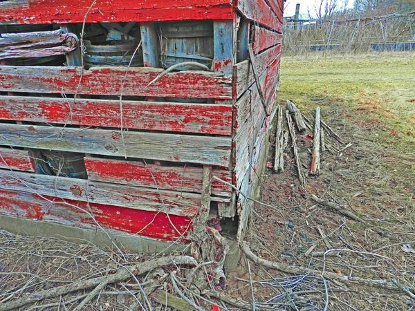 Hooked by Nature Barn Broken Built Structure Day Deteriorated Deterioration Grass Growth Hooked Landscape Nature Nature Taking Over No People Old Old Barn Old Barns Outdoors Red Red Paint Run-down Rural Scene Tranquility Tree Growing Wood Wood - Material