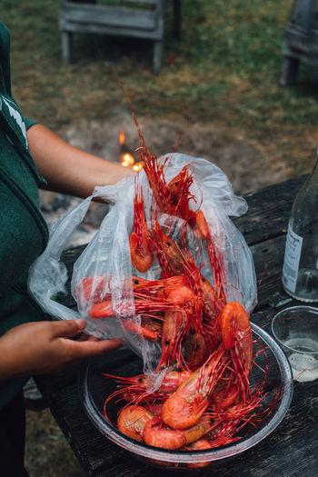 Spot prawns fresh shrimp outdoors camping cookout