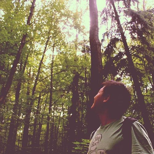 Ruhbank Forest Tree Nature green stuttgart germany instagram ig igers igaddict instahub photo instamood photooftheday picoftheday bestoftheday instagood instagramhub instadaily webstagram travel travelgram instatravel europe beautiful pretty scenery landscape