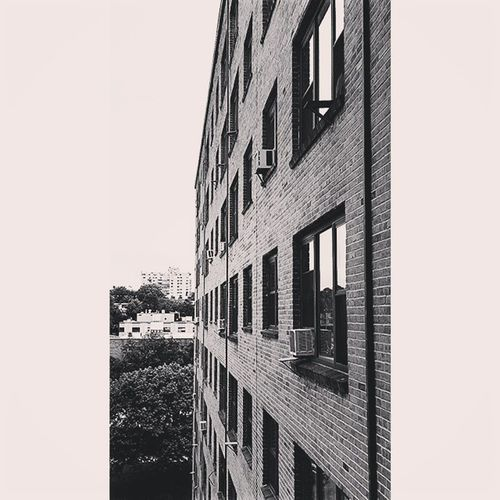 Brickwork  Blackandwhite Brickwall Architecturelovers My View Looking Out The Window