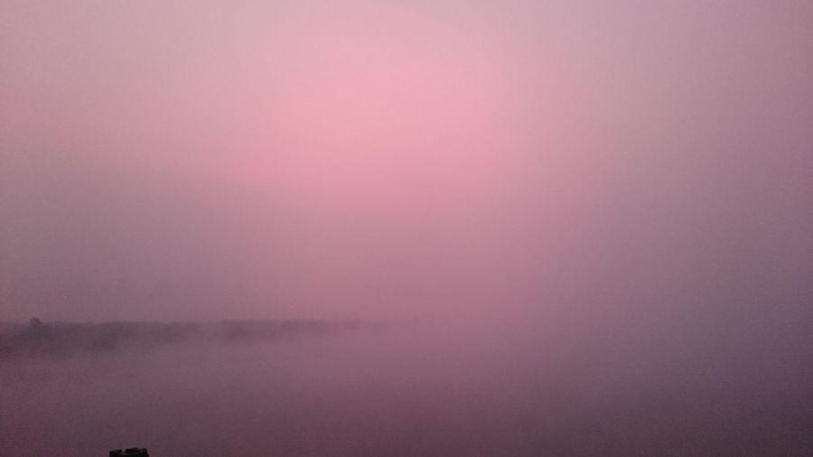 Smog Calm Air