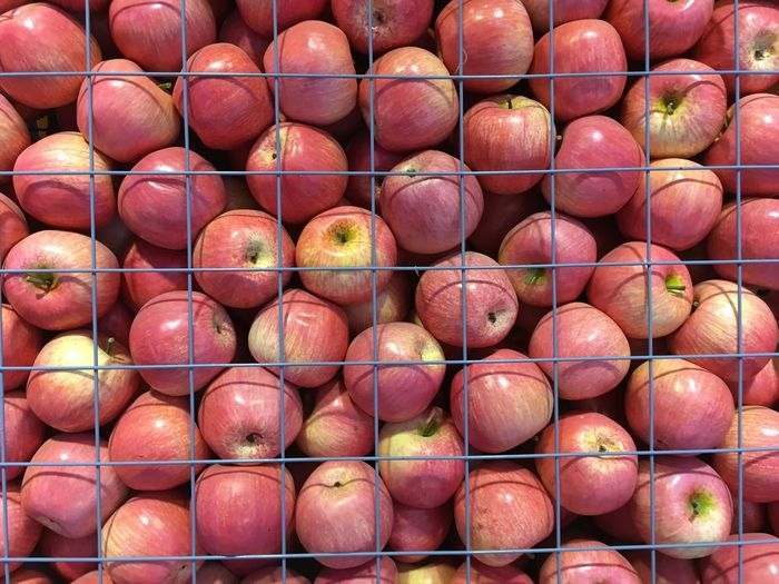Close-Up Of Red Apples In Rack
