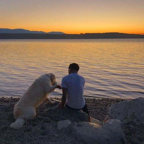 Sunset doggy Water Sunset Rear View Sky Men Nature One Animal Leisure Activity Beauty In Nature Real People One Person Mammal Canine Dog Pets Beach Tranquility Outdoors