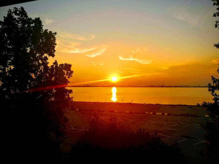 Sunset in italy Tree Water Sunset Sea Silhouette Sun Sunlight Reflection Orange Color Sky Streaming Coast Shining Tide Idyllic Calm Romantic Sky Shore Surf Ocean Sandy Beach Remote Wave Tranquil Scene Sky Only Dramatic Sky Atmospheric Mood Countryside Headland Fishing Pole